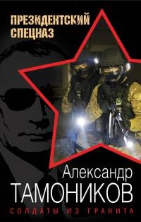 Солдаты из гранита читать онлайн