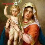 Сон Марии читать онлайн
