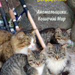Кошачий Мир читать онлайн