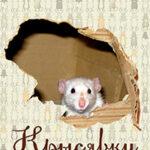 Крысявки. Крысиное житие в байках и картинках читать онлайн