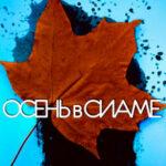 Осень в Сиаме читать онлайн